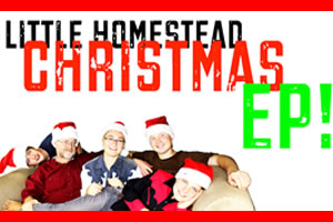 Christmas Original & Cover Tunes by Little Homestead Country Band